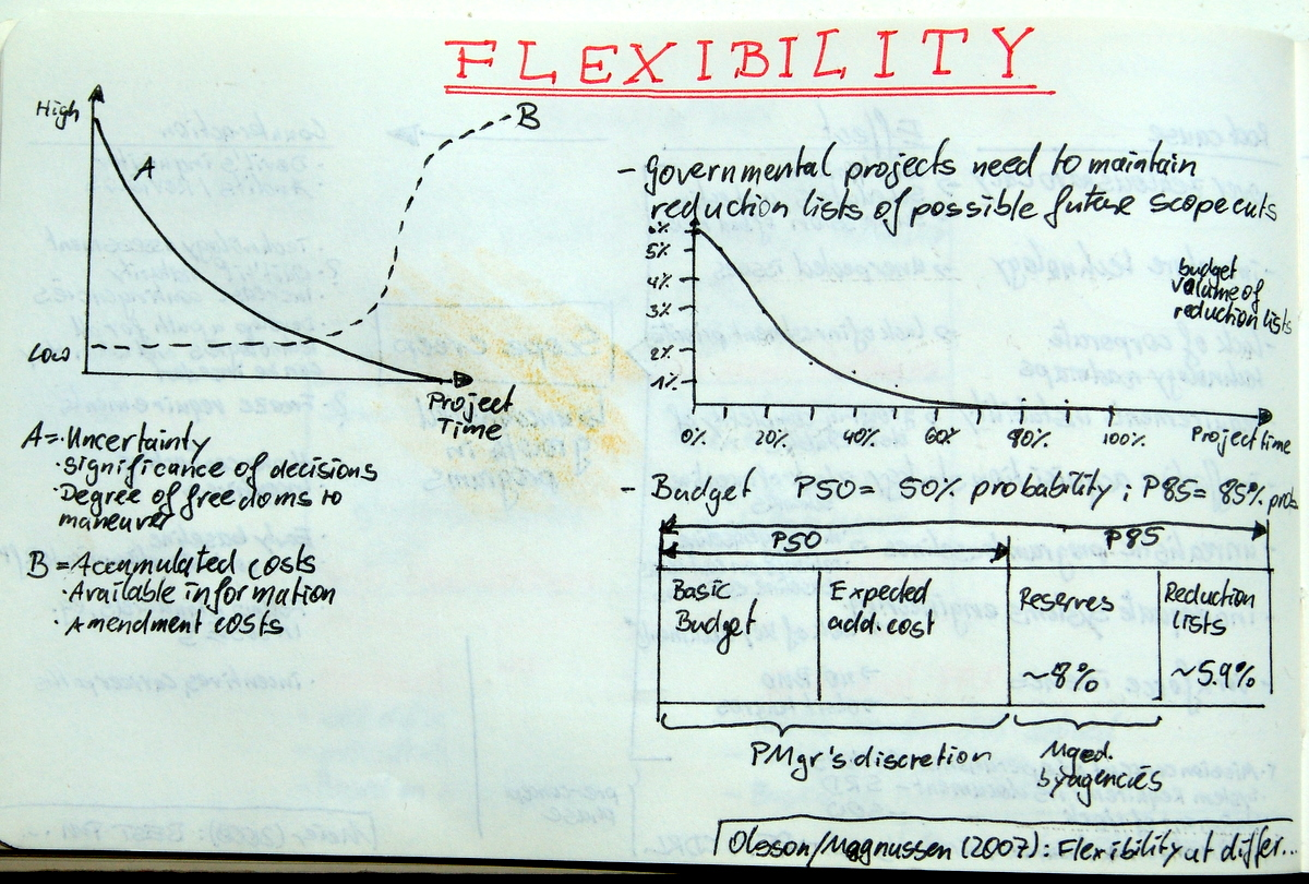 Flexibility and Funding in Projects