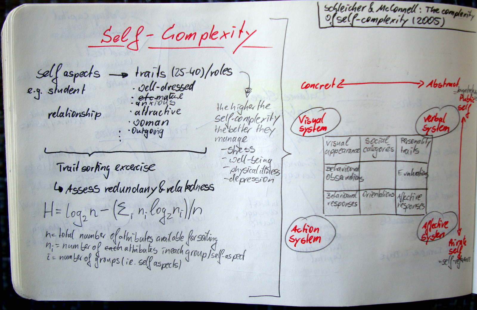 The Complexity of Self–Complexity: An Associated Systems Theory Approach (Schleicher & McConnell, 2005)