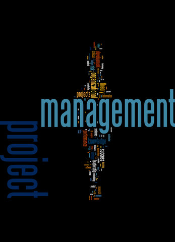 Wordle of Keywords from the Journal of Project Management 2003-2007