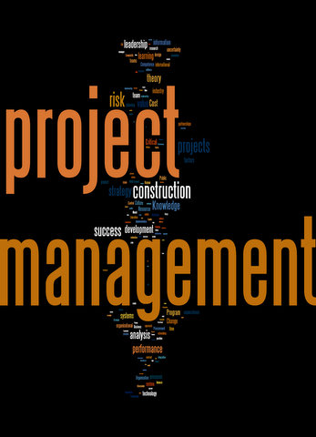 Wordle of all keywords published in International Journal of Project Management and Journal of Project Management 2003-2008